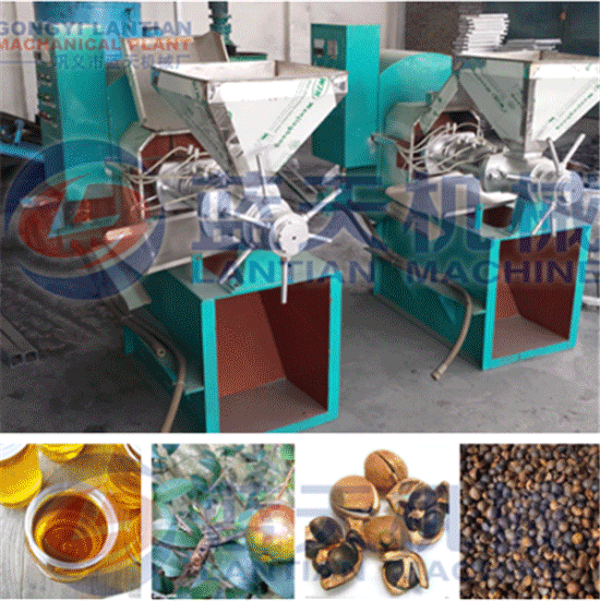 Tea seed oil press machine
