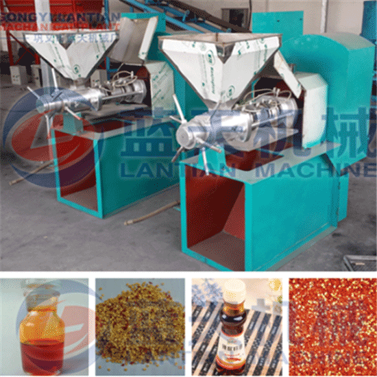 Screw pepper seed oil press
